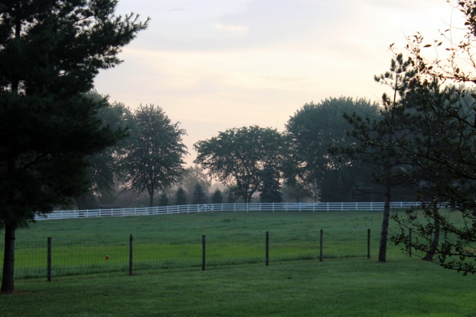 The view at the front of our campsite, an Amish homestead.